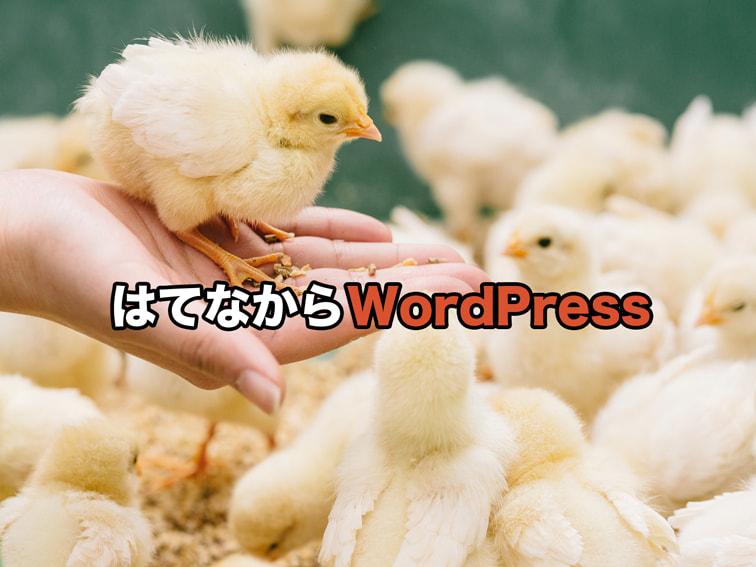はてなからWordPressキャッチ