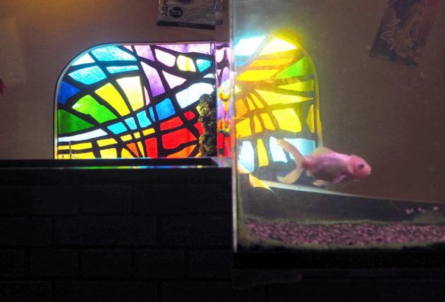 水槽とステンドグラス