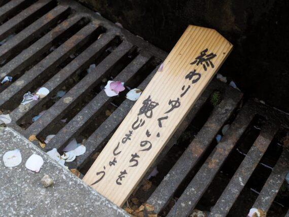 久安寺・池のメッセージ