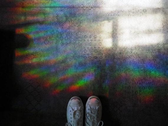 花と寅の虹の床