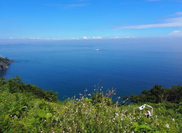アカオハーブ&ローズガーデンから見る海